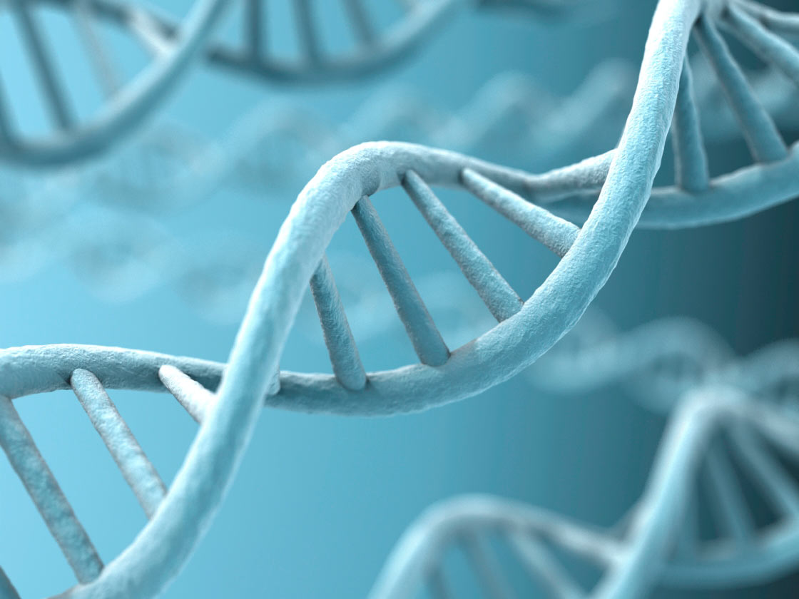 Mancinismo genetico